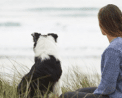 The Breakup Wisdom I Learned from my Dog